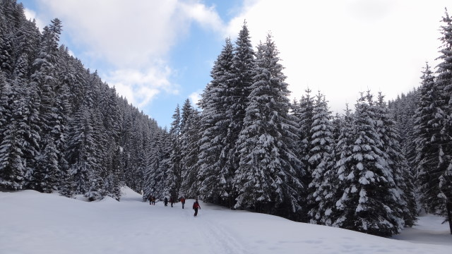 01qq Moeciu_Strunga_Padina_iarna _blog