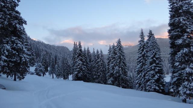 11qq Moeciu_Strunga_Padina_iarna _blog
