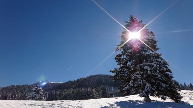 Octombrie de iarna _blog 01