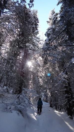 Octombrie de iarna _blog 04
