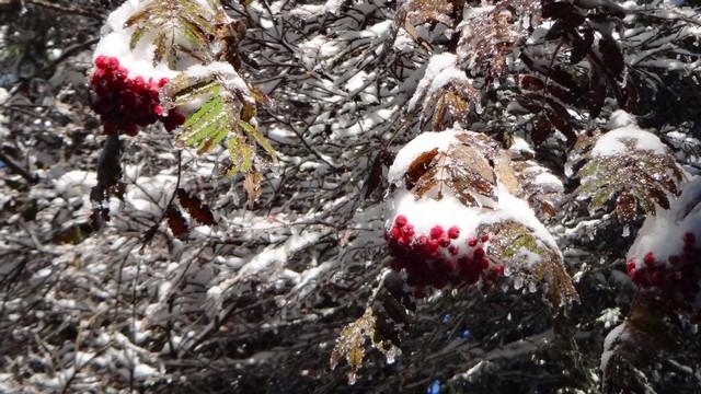 Octombrie de iarna _blog 05
