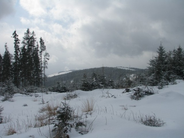 Giumalau_trav_iarna _blog 077