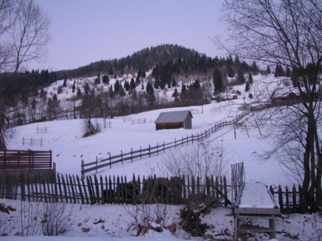 Rarau_trav_iarna _blog 10