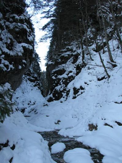 Rarau_trav_iarna _blog 11