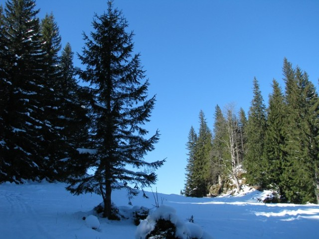 Rarau_trav_iarna _blog 19