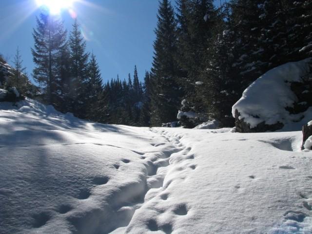 Rarau_trav_iarna _blog 25