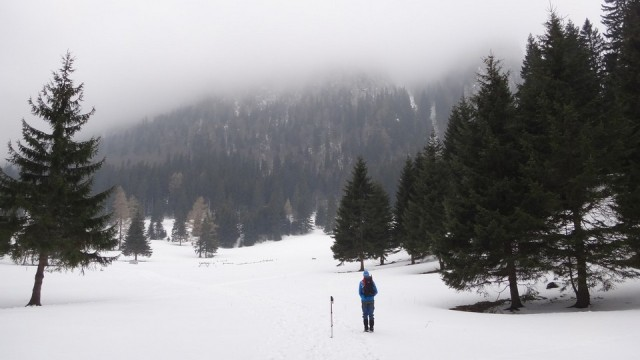 V Coltilor_iarna_14032015_blog 005