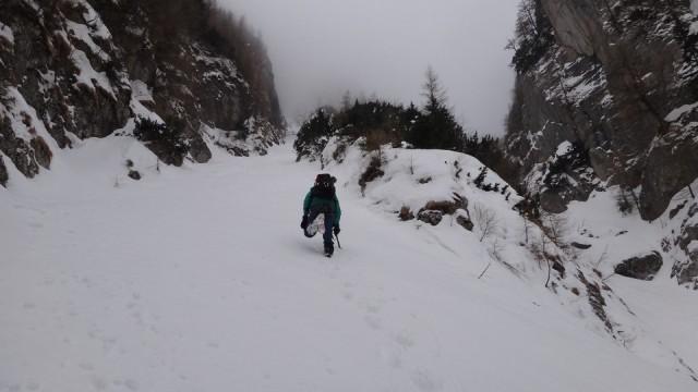 V Coltilor_iarna_14032015_blog 020