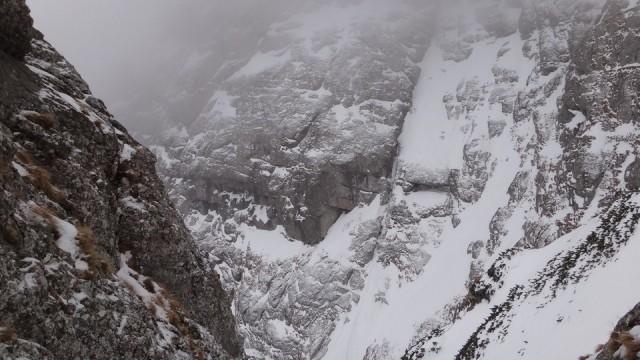 V Galbinele sec_iarna_14032015_blog 004