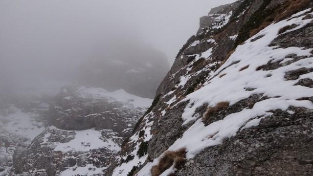 V Galbinele sec_iarna_14032015_blog 008