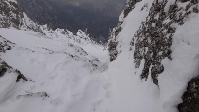 V Galbinele sec_iarna_14032015_blog 013