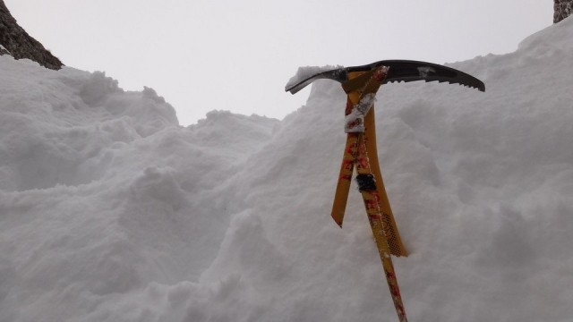 V Galbinele sec_iarna_14032015_blog 025