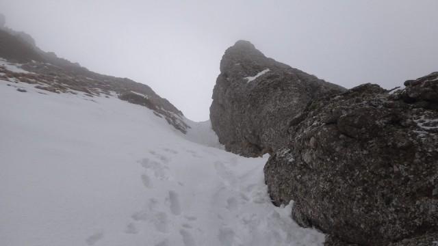 V Galbinele sec_iarna_14032015_blog 028