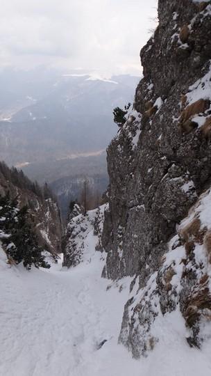 V Galbinele sec_iarna_14032015_blog 052