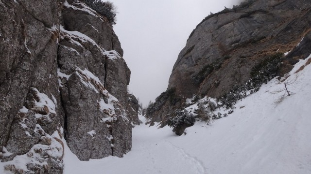 V Galbinele sec_iarna_14032015_blog 061