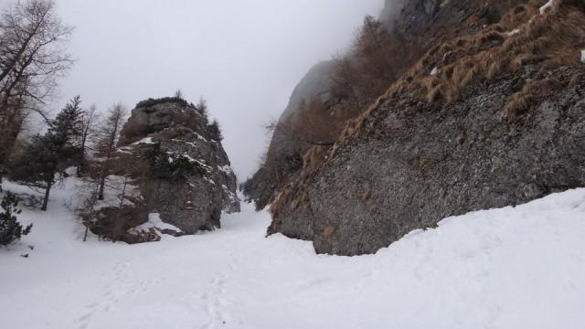 V Galbinele sec_iarna_14032015_blog 065