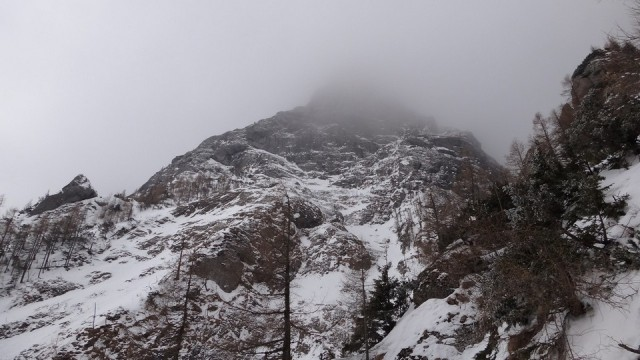 V Galbinele sec_iarna_14032015_blog 066