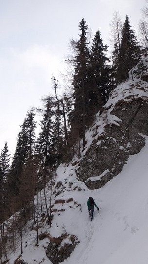 V Galbinele sec_iarna_14032015_blog 073