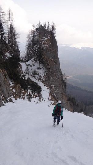 V Galbinele sec_iarna_14032015_blog 079