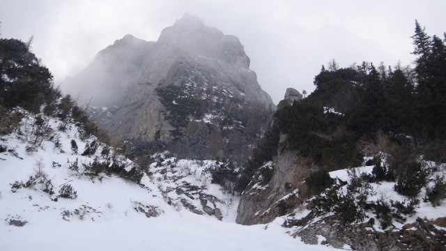 V Galbinele sec_iarna_14032015_blog 084