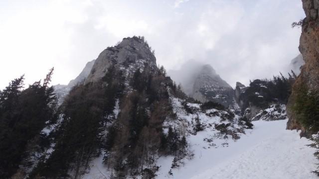 V Galbinele sec_iarna_14032015_blog 092