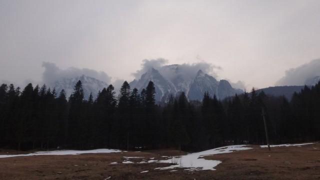 V Galbinele sec_iarna_14032015_blog 098